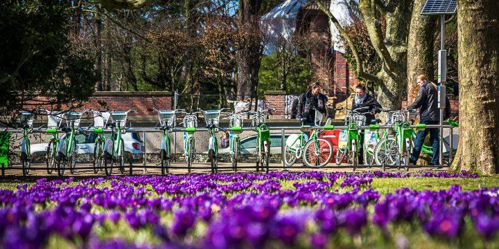 Koncepcja budowy systemu Szczecińskiego Roweru Metropolitalnego