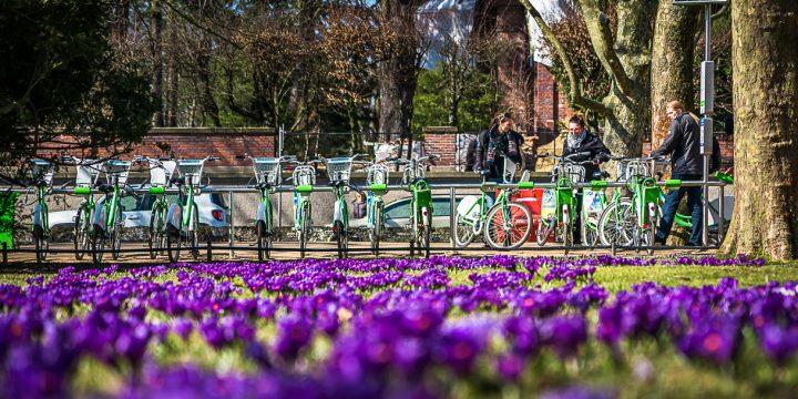 BikeS wraca po wirusowej przerwie