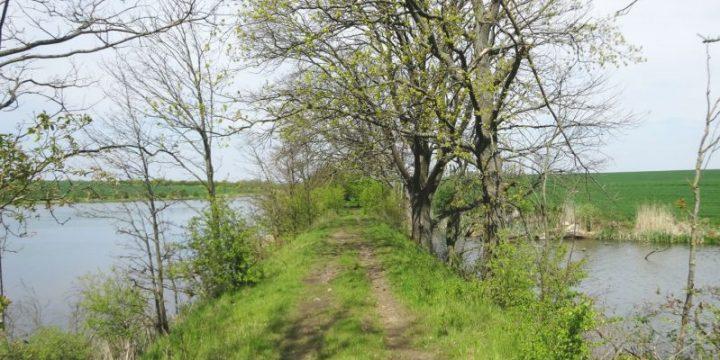 Powstanie ścieżka rowerowa w Gminie Kołbaskowo